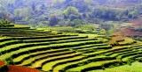 Việt Bắc- Lịch sử và conngười