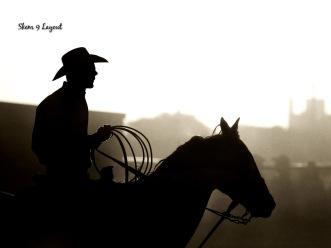 cowboy-wild-west-rodeo