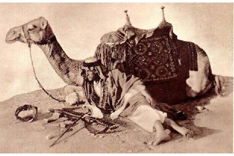 """T. E. Lawrence với con lạc đà """"Jedha"""" thân yêu của ông"""