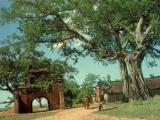 Vài tâm đắc về làng xã ViệtNam