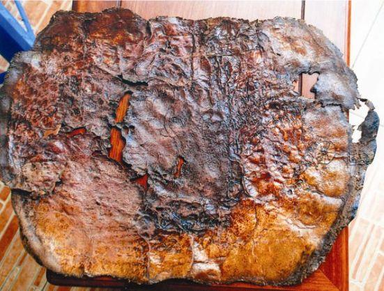 Ảnh thu nhỏ tấm bản đồ cổ khắc trên da thú
