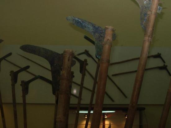 Hình 8 - Qua đồng Long Giao trưng bày ở bảo tàng thành phố Hồ Chí Minh (thân gỗ được ghép vào qua đồng để trưng bày công cụ qua đồng)