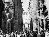Gamal Nasser và Phong trào Sĩ quan Tựdo