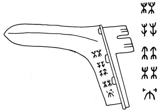 CHU VIET 31