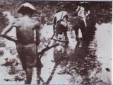 Những dấu hiệu sụp đổ của các triều đại phong kiến ViệtNam