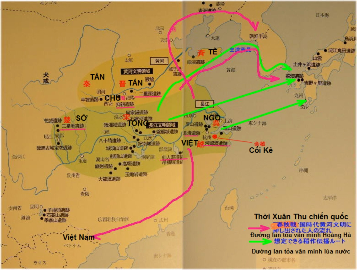 Nhìn lại lịch sử Bách Việt và quá trình Hán hóa Bách Việt