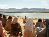 Đi tìm Đức Kitô lịchsử