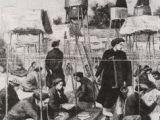 Năm Đinh Dậu (2017) nhớ về vị đỗ đầu khoa thi Hương Đinh Dậu (1837) ở trường thi NghệAn