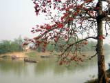 Đặc điểm văn hóa truyền thống vùng Bắc Ninh từ kho tàng phương ngôn xứBắc