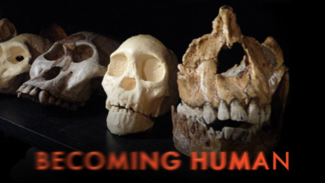 becoming-human-vi.jpg
