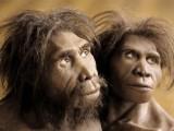 Nguồn gốc loài người: Người ĐứngThẳng