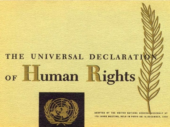 Pillar7SocietyUniversalDeclarationofHumanRights.jpg