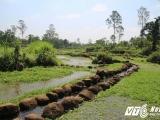 Một thể chế đồng bằng hay trọng nông ở miền trung Việt Nam thời vương quốc Champacổ
