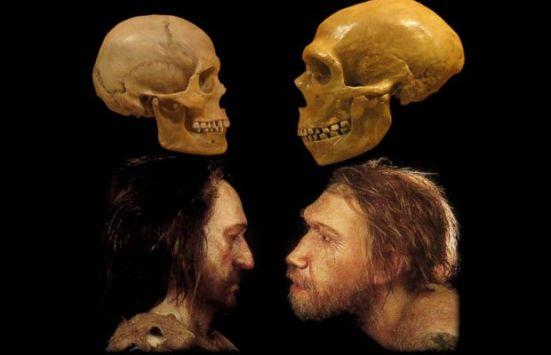 neanderthal-human.jpg