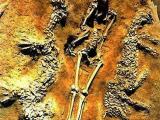 Chủ nhân ngôi mộ 45 ở Bộc Dương- Hà Nam làai?
