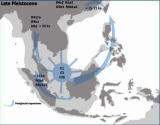 Người Cổ Đông NamÁ