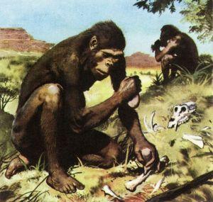 human-clipart-hominid-644391-3261078