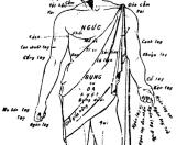 Tiếng Việt thời LM de Rhodes – vài nhận xét về cách dùng tên bộ phận cơ thể ở phía dưới như lòng, bụng, dạ, ruột[1] cho đến vật âm mình! (phần13)