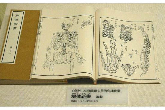 Japanese_on_Western_anatomy