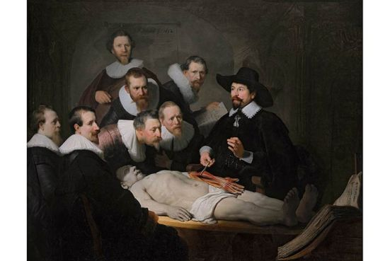 Rembrandt-bai-hoc-giai-phau