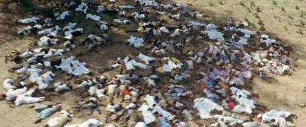 440px-Zanzibar_revolution_graves2.jpg