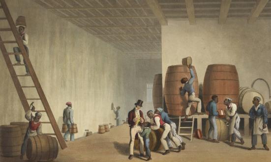 sản xuất rượu rum