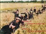 Lược sử chế độ KhmerĐỏ