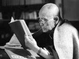 Daisetzu Teitarō Suzuki- Người có vai trò then chốt trong việc phổ truyền Phật giáo tại Tâyphương